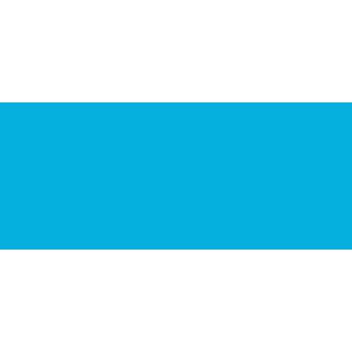 An icon ram